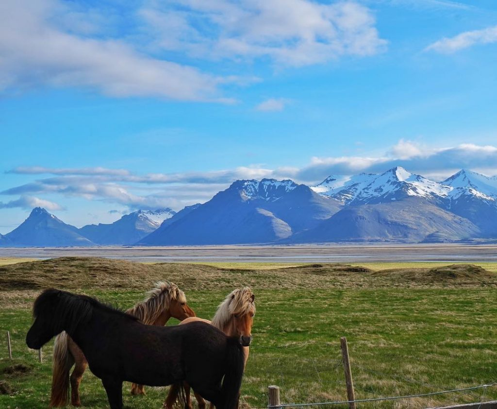 20 Iceland Tips to Know Before You Go