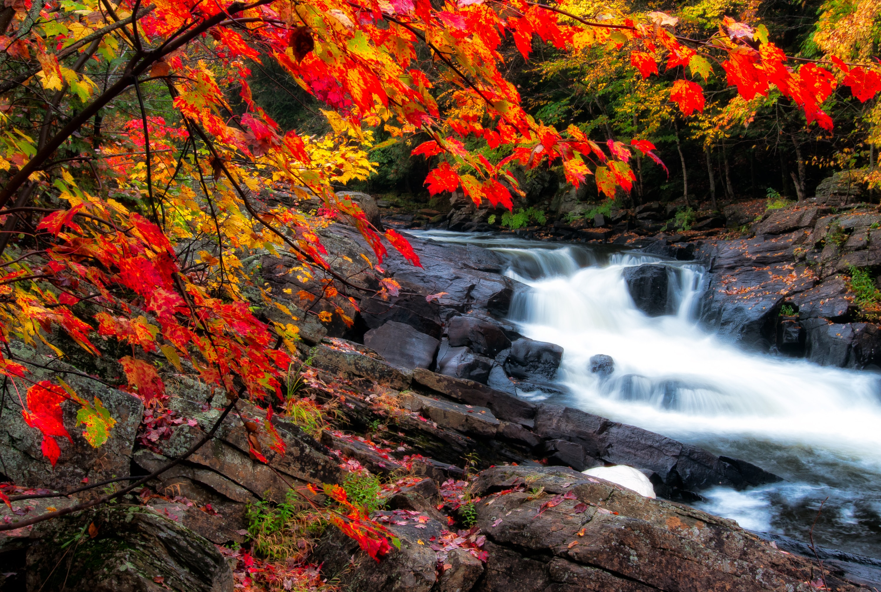 Fall Foliage Weekend Getaways