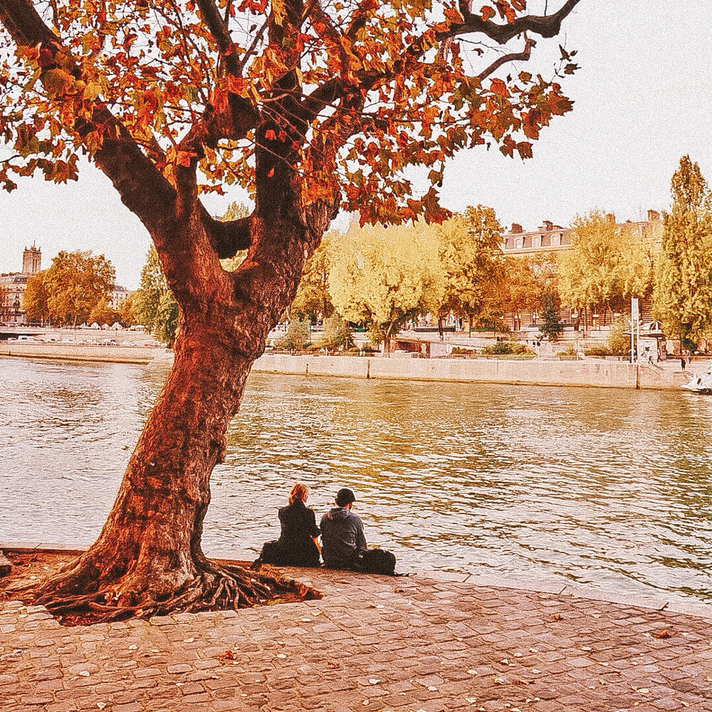 A couple sitting by the river under a tree with autumn leaves