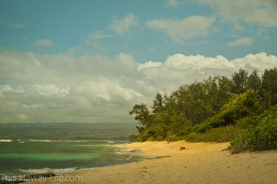 The beach at North Shore of Oahu