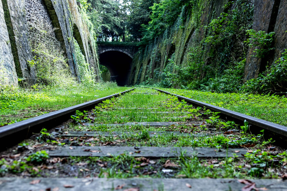 La Petite Ceinture, an abandoned railway one of the more unusual things to do in Paris