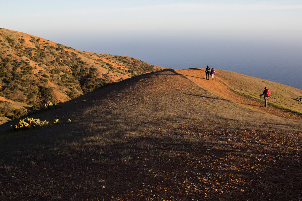 Stunning coastline views from the Trans Catalina Trail