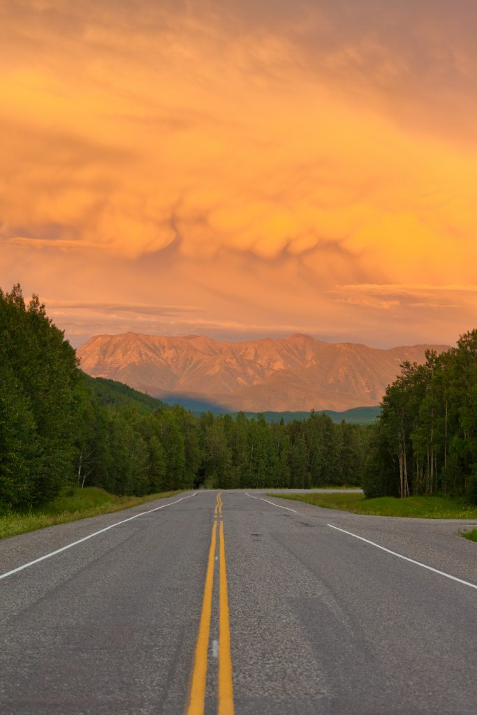 Summer Road Trips in the US