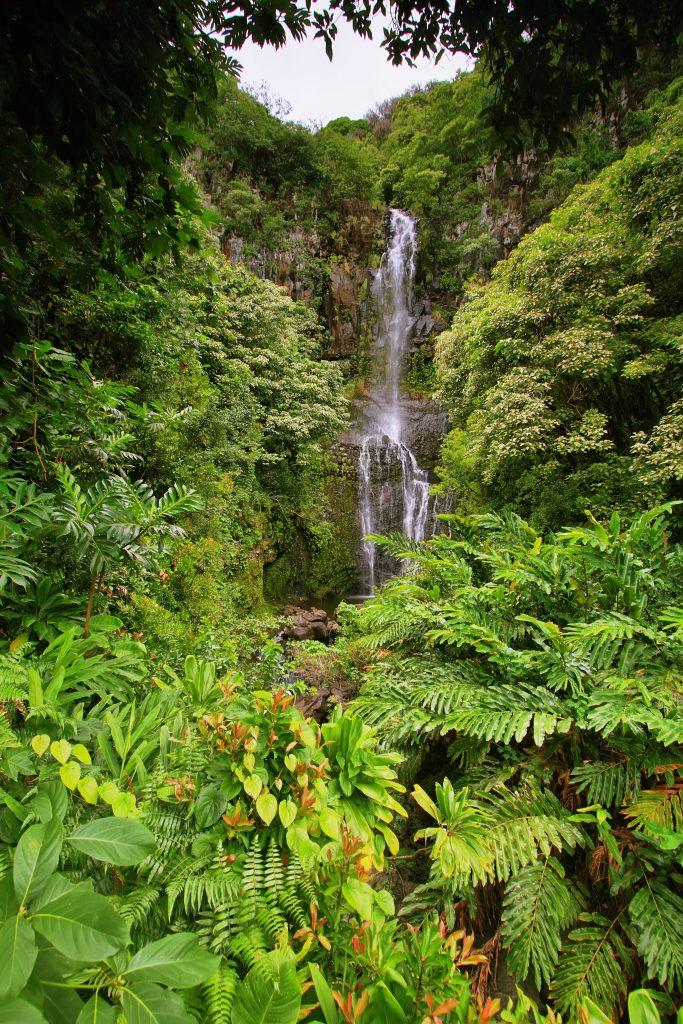 Summer Road Trips - Hana to Maui