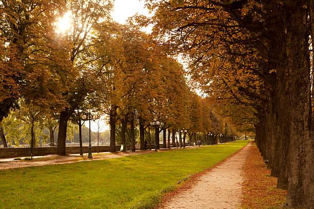 Paris in Fall: Jardin des Tuileries