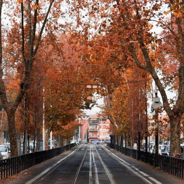 Roma - Italy in Fall