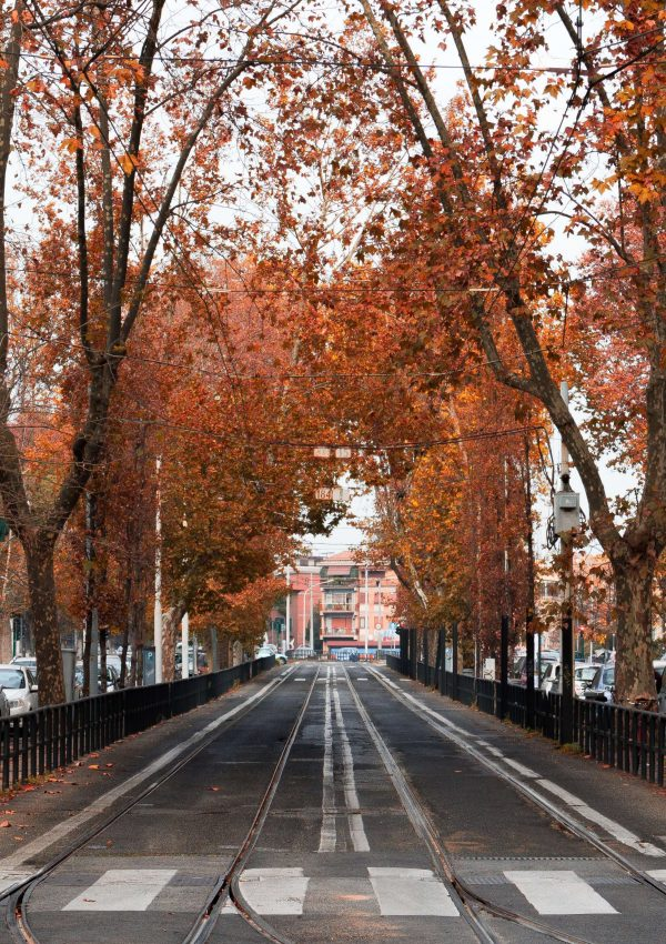 Places To Visit In Italy in Fall